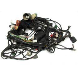 APRILIA RSV 1000 TUONO Main wiring harness AP8127396