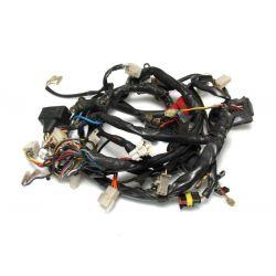 APRILIA RXV 450 2007 Main wiring harness AP9100568
