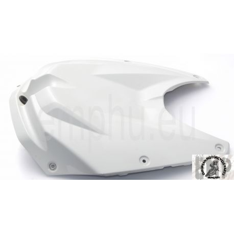 BMW S1000RR Tank cover, center 46637723315