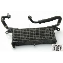 BMW S1000RR Oil cooler, black  17227705461