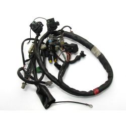 Aprilia Caponord 1000 Injection wiring AP8127297