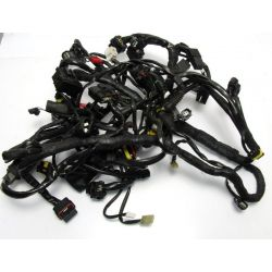 DUCATI MULTISTRADA 1200 S ELECTRIC WIRING 51017011C