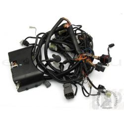 KTM SUPERDUKE 990 WIRING HARNESS 61111075100