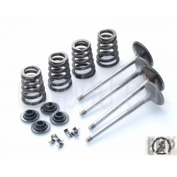 KTM SMR SMC R SM 690 VALVE AND SPRING KIT MILEAGE  1000KM 75036030000 , 75036031000 , 75036028044 , 7503603200