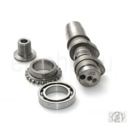 APRILIA SXV RXV MXV 450 550 Camshaft cpl. , Ball bearing , Timing gear , Special screw AP9150502 , AP9150372
