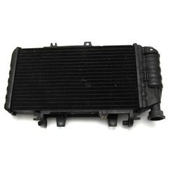 Radiator 17118530393 , 17117699226 BMW F 800 GS