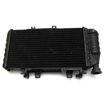 Radiator 17118530393 , 17117699226 BMW F 800 GS