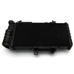 Radiator , Repair kit for radiator bracket 17117678284 , 17117709754 , 17111464985 , 17117692439 , 17111464984 BMW F 650 GS