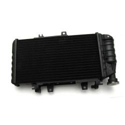 Radiator 17117678284 , 17117695769 , 17111464985 , 17117692439 , 17111464984 , 17117679296 BMW F650GS 2009