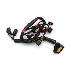 INJECTION WIRING 893720 APRILIA SHIVER 750