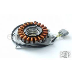 BMW R1200GS Generator STATOR COIL 12317724032