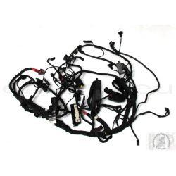 BMW R1200GS ADVENTURE Main wiring harness  61117726669